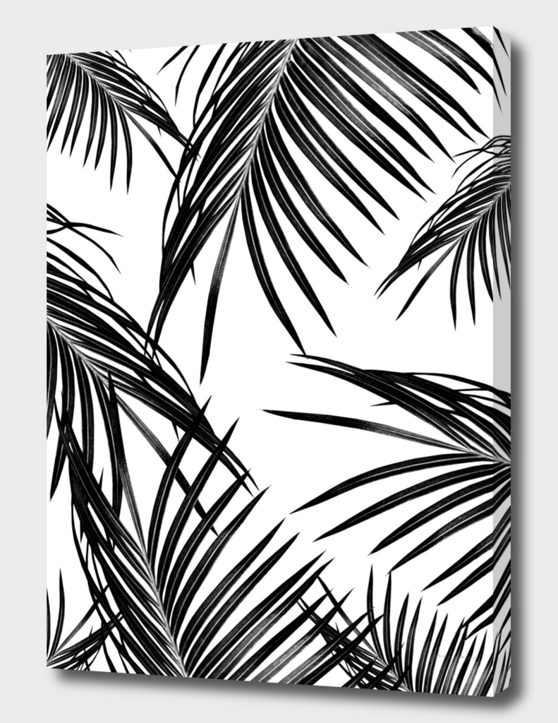 Black Palm Leaves Dream #1
