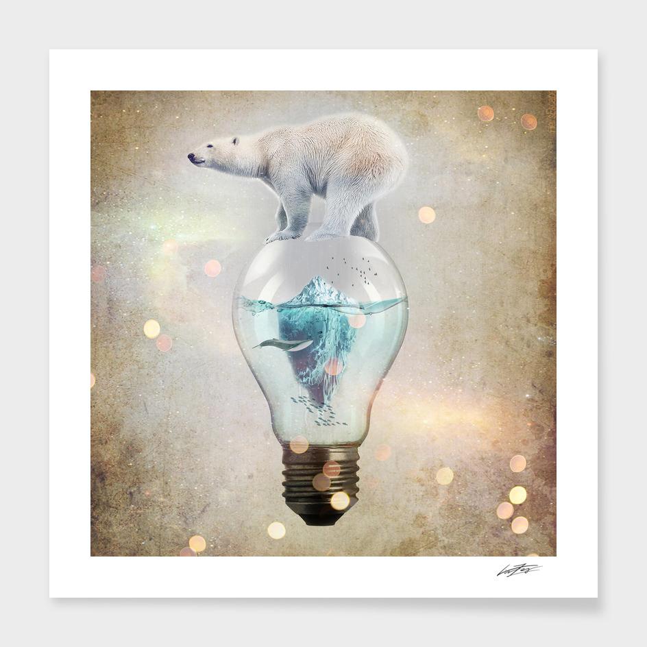 Polar Bear Ice Cap II