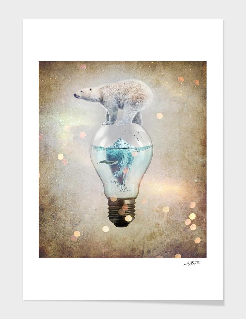 Polar Bear Ice Cap