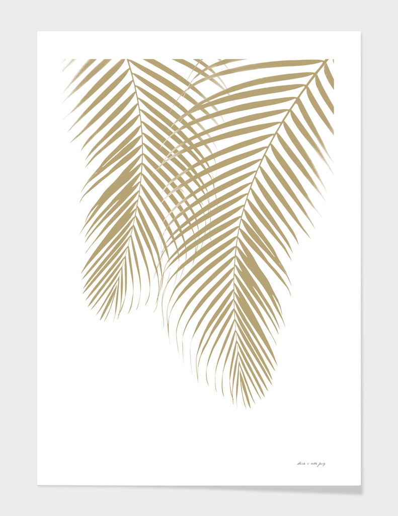 Summer Palm Leaves #1