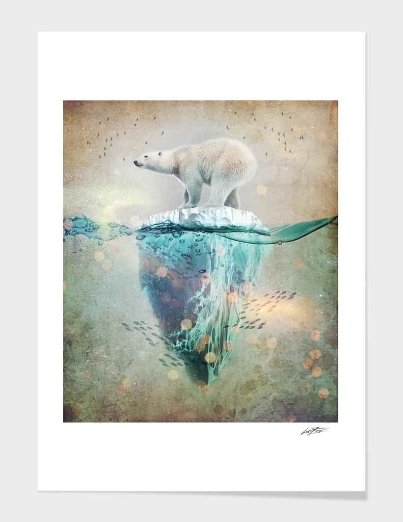 Polar Bear Adrift