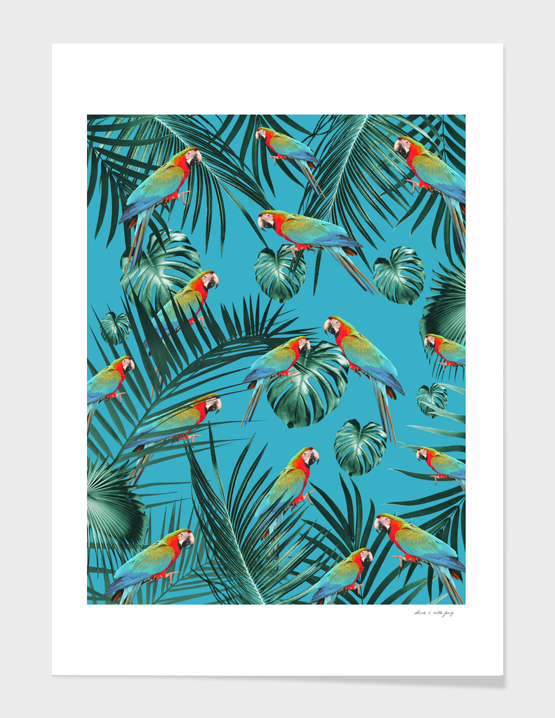 Parrots in the Tropical Jungle #1