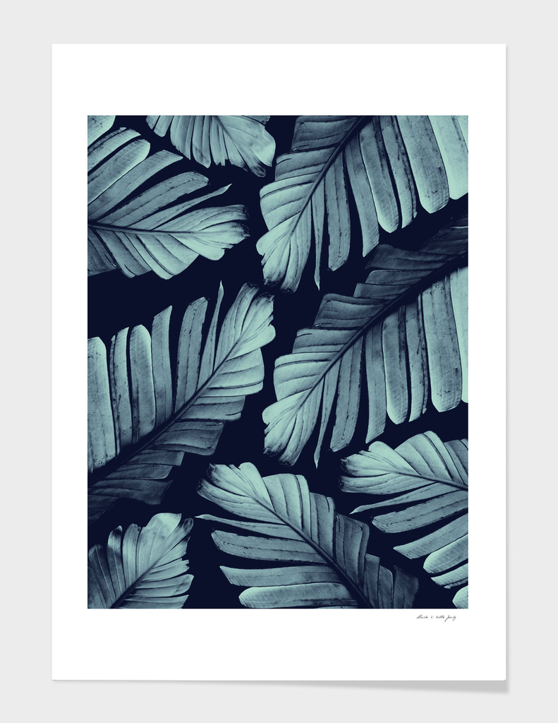 Navy Blue Banana Leaves Dream #3