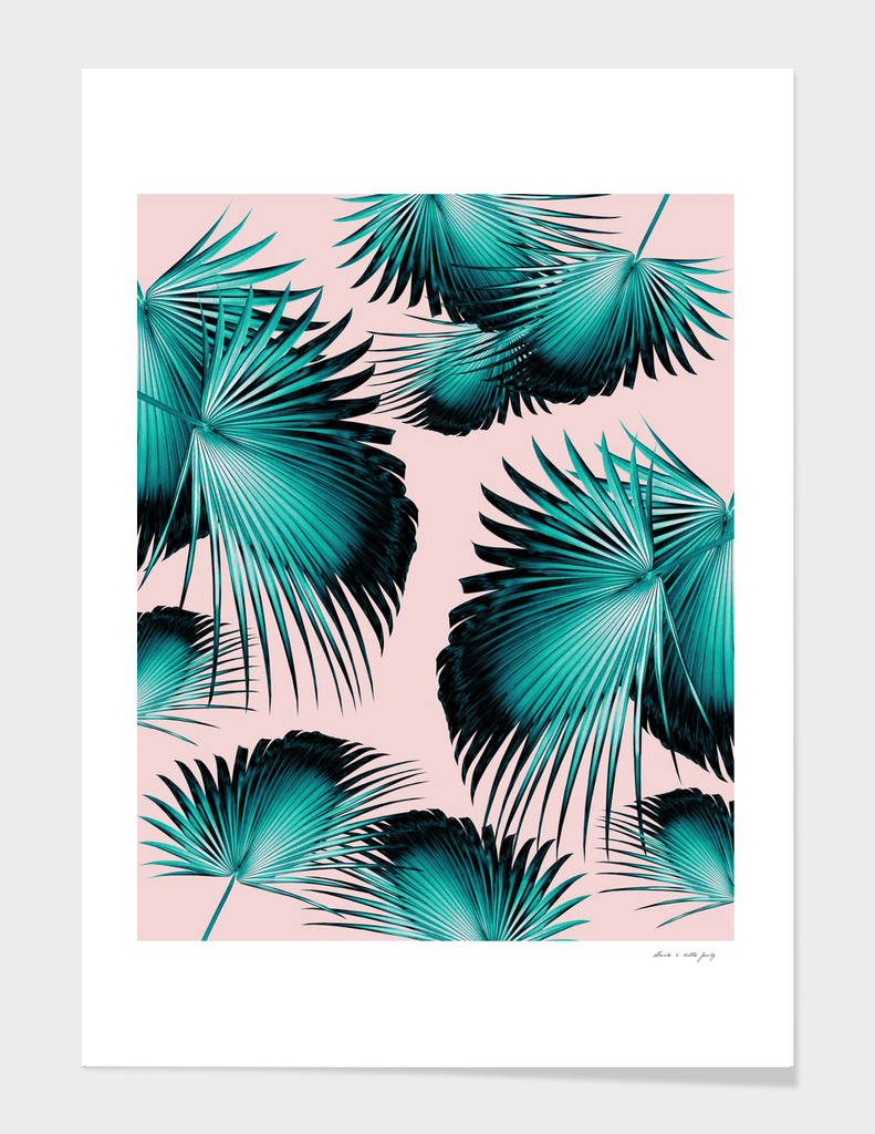 Fan Palm Leaves Paradise #4