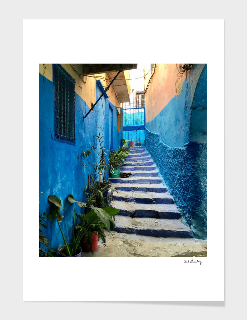 Colors of the Medina