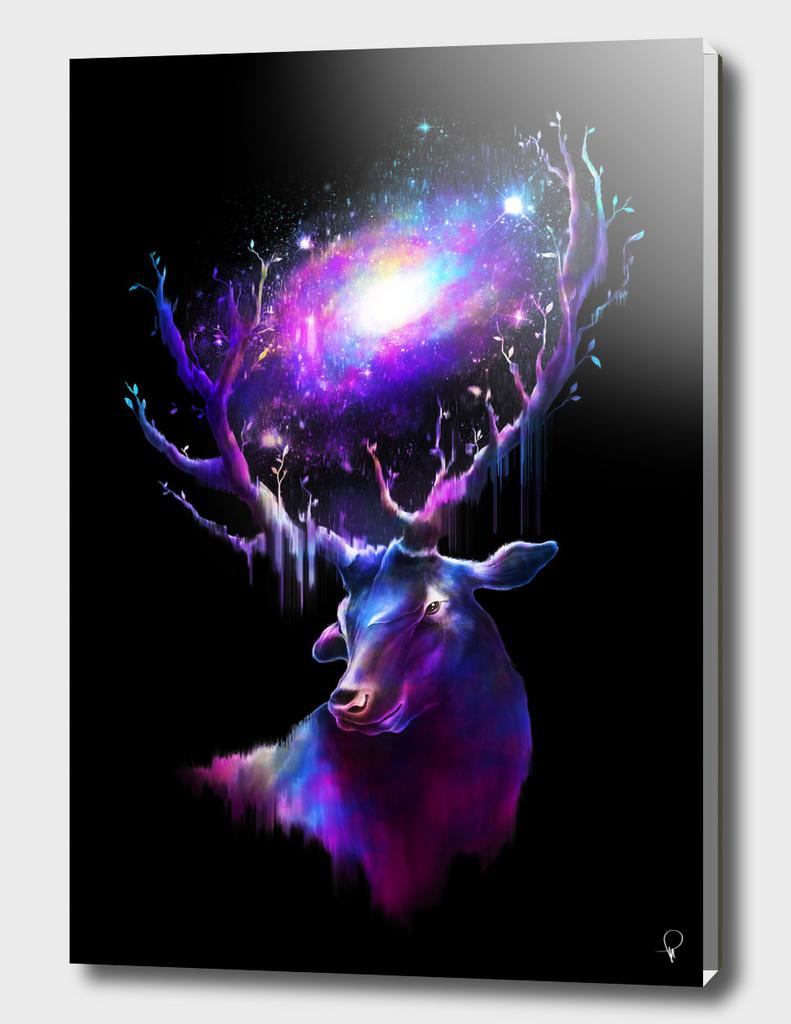 Deer Traveler