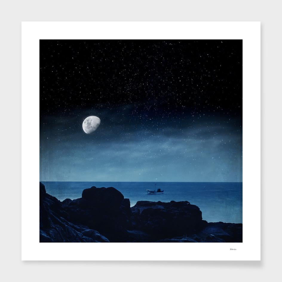 nocturnal sea