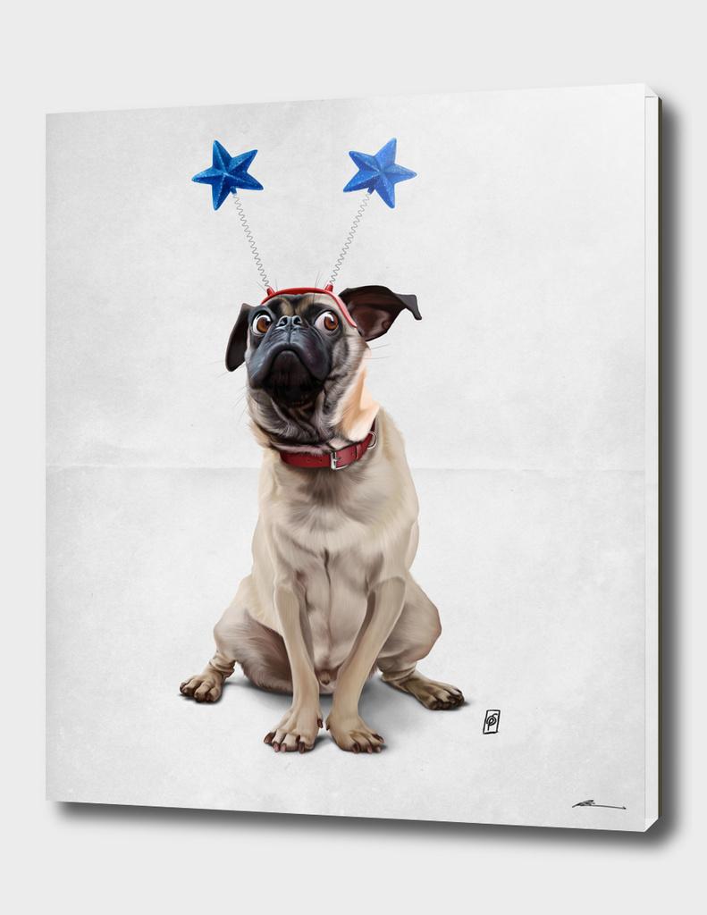 A Pug's life (wordless)