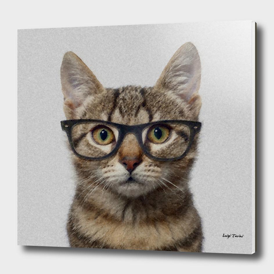 Geek Cat