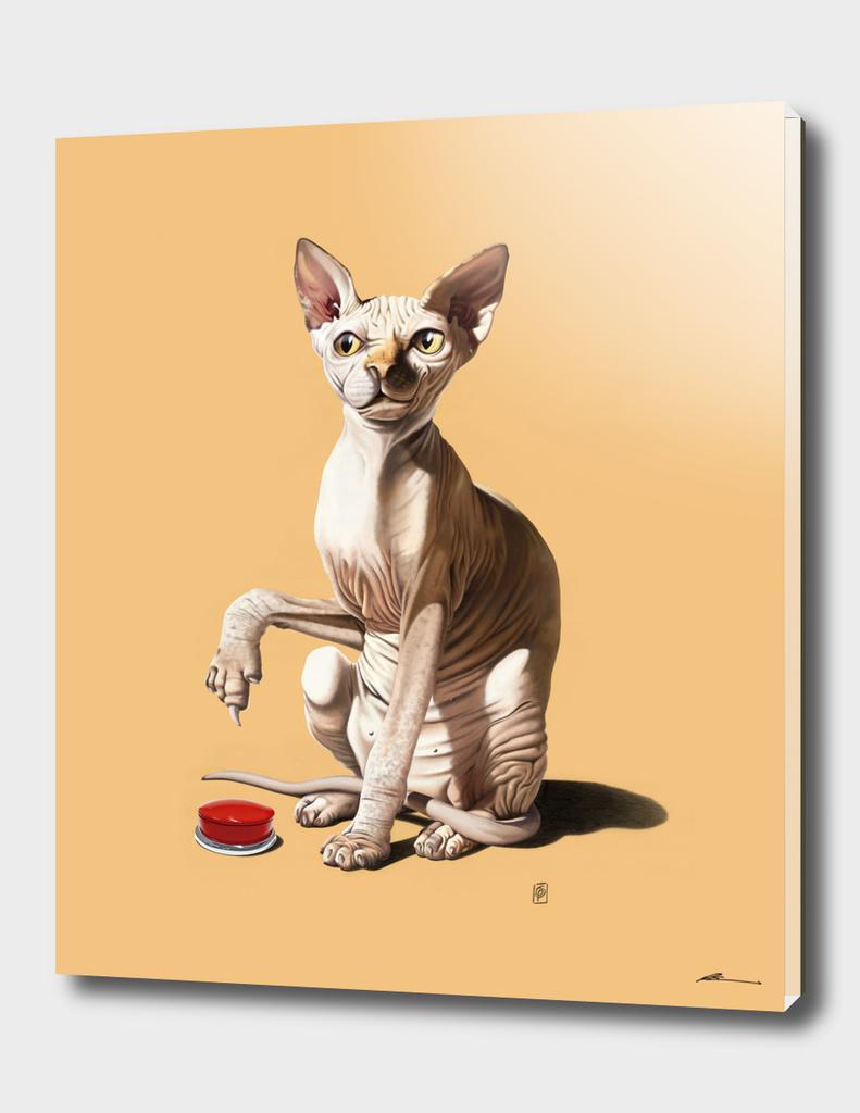 Cat-astrophe (colour)