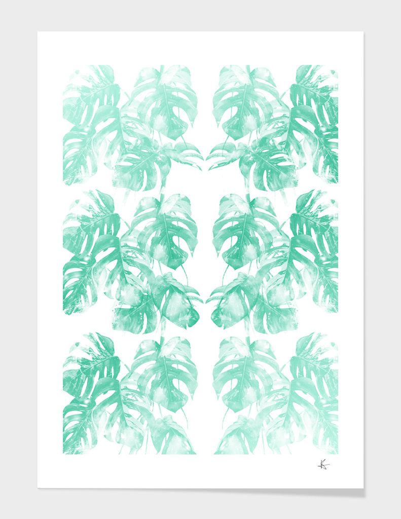 Monstera Tropical Jungle