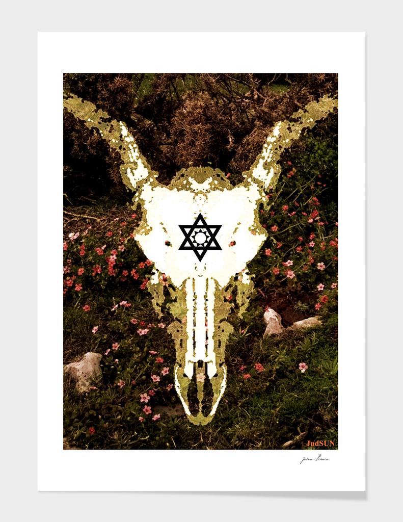 Deer Skull VIII