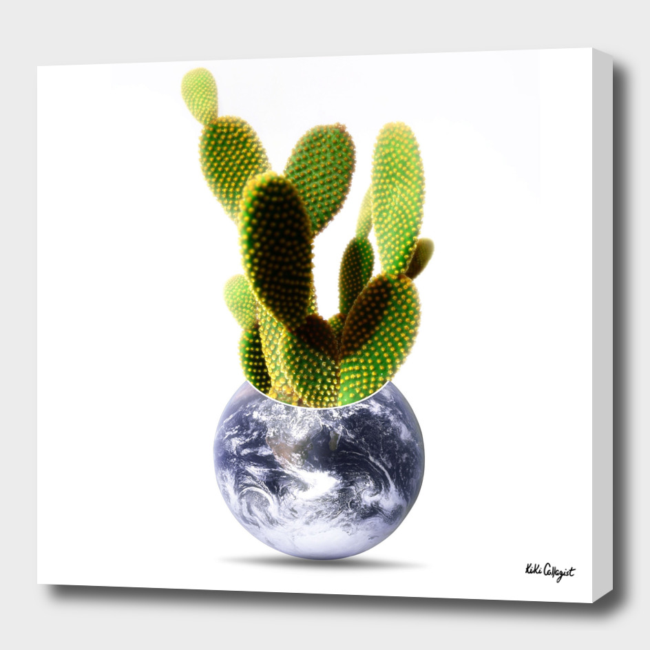 Whole world is a cactus