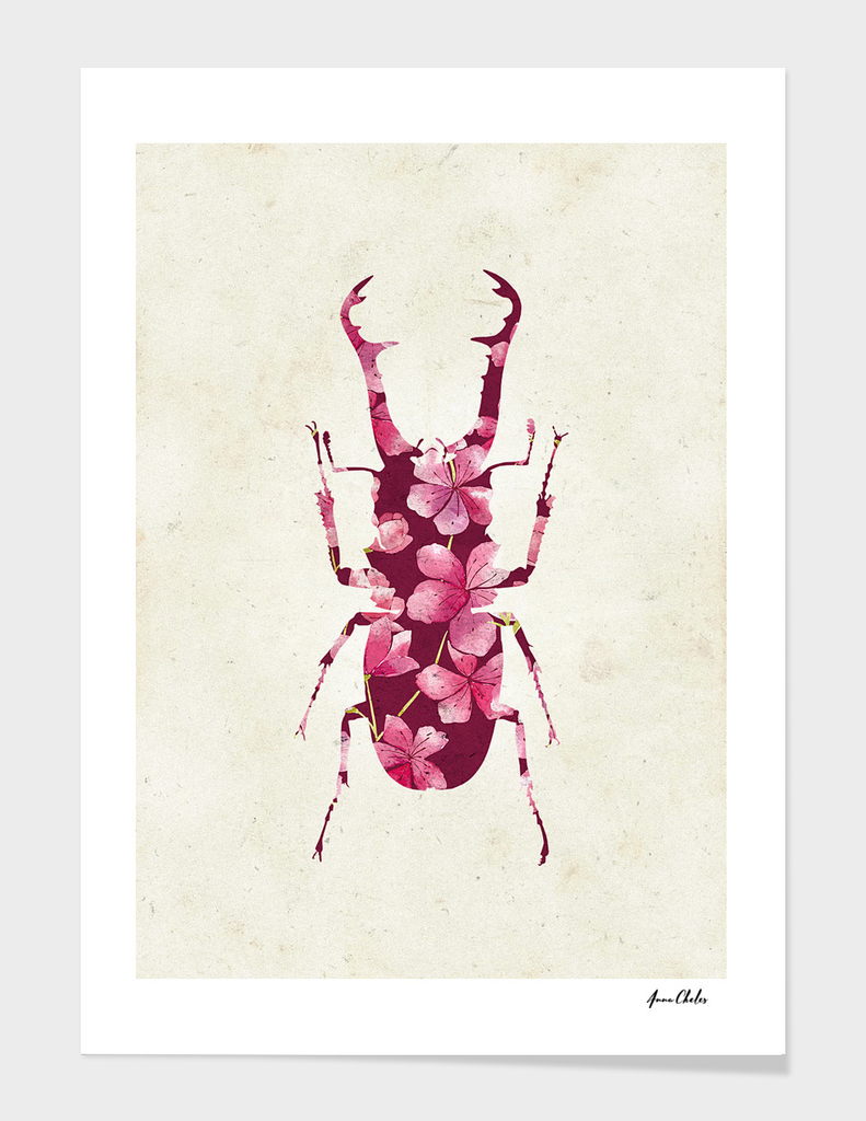 Insect Bloom I