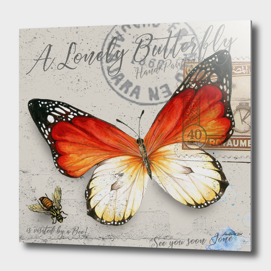 Lonely Butterfly Orange