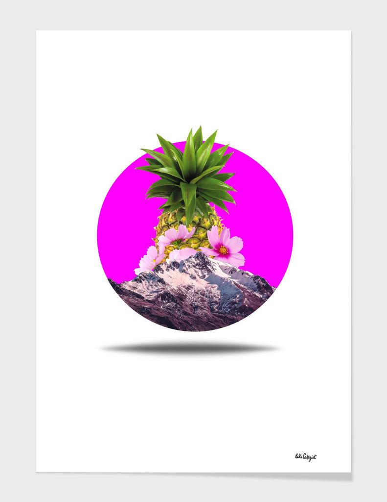 Pineapple fantasy