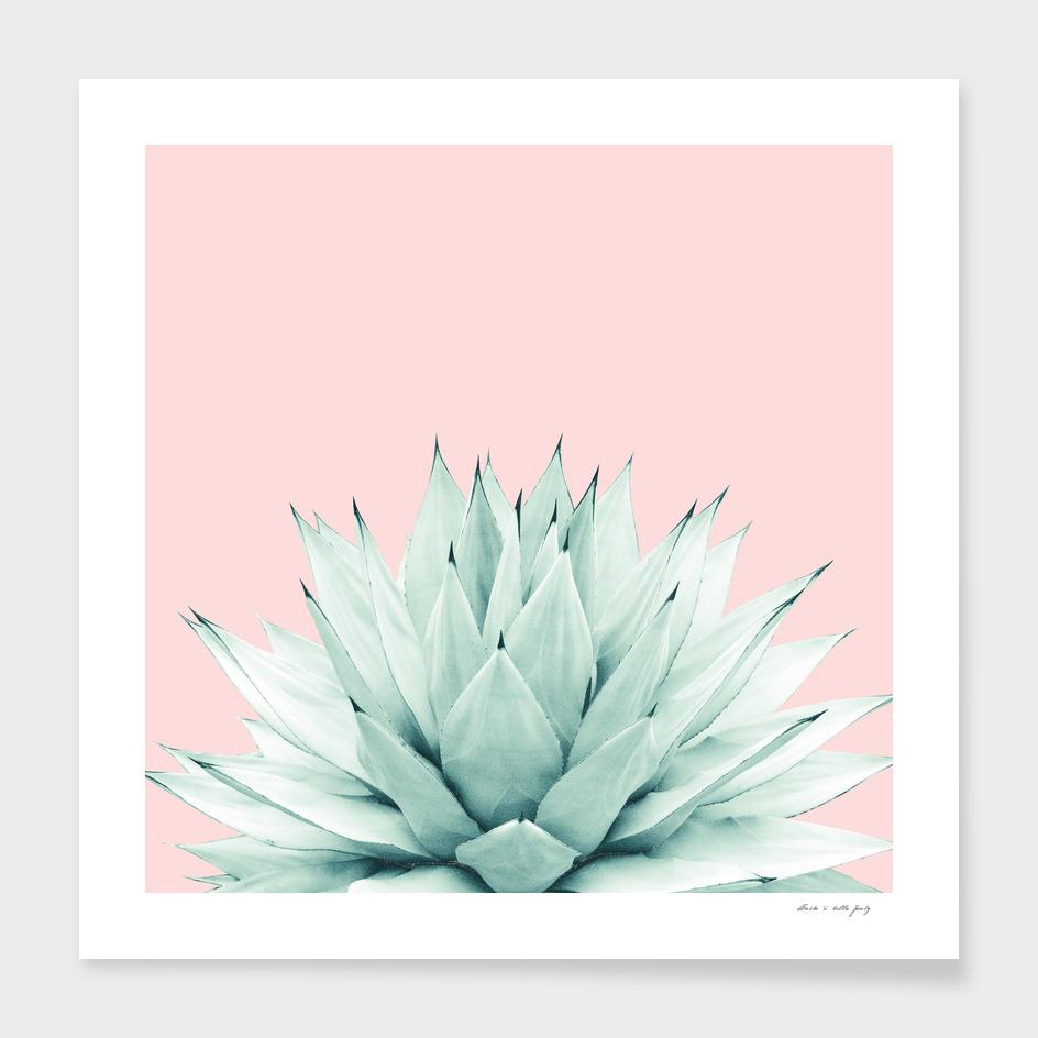 Agave Blush Summer Vibes #2 #tropical #decor #art