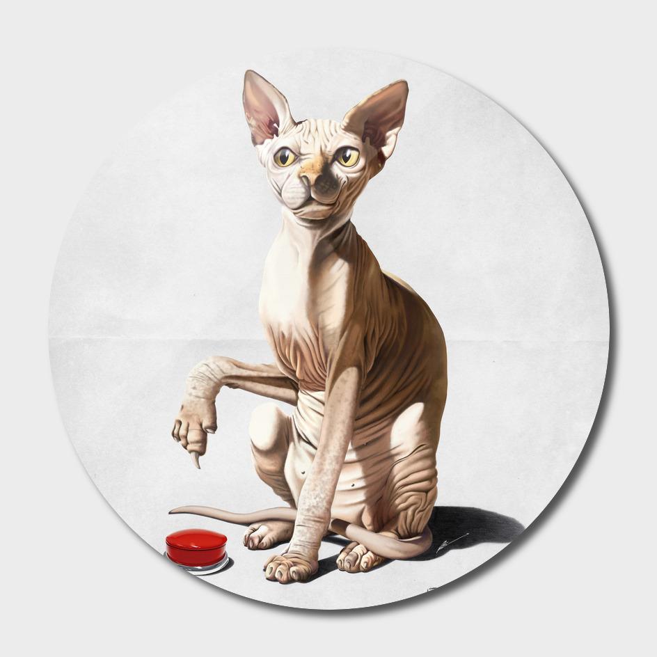 Cat-astrophe (Wordless)