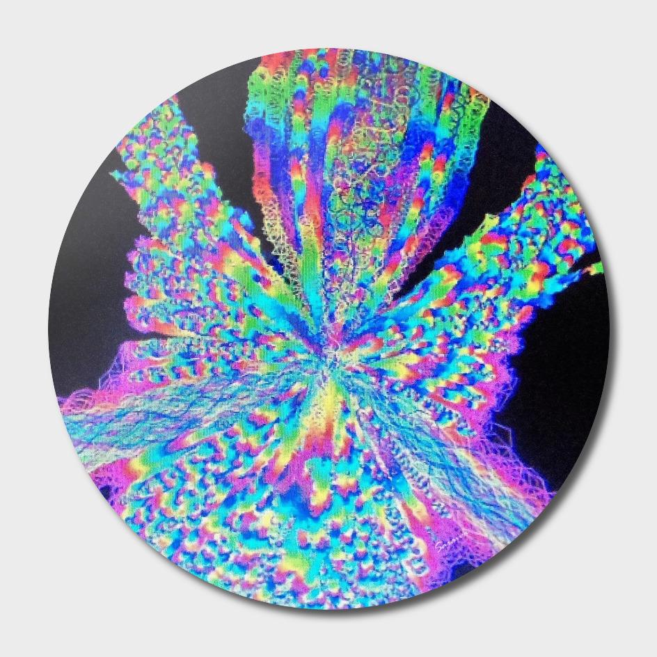 Magical Creations XXIII