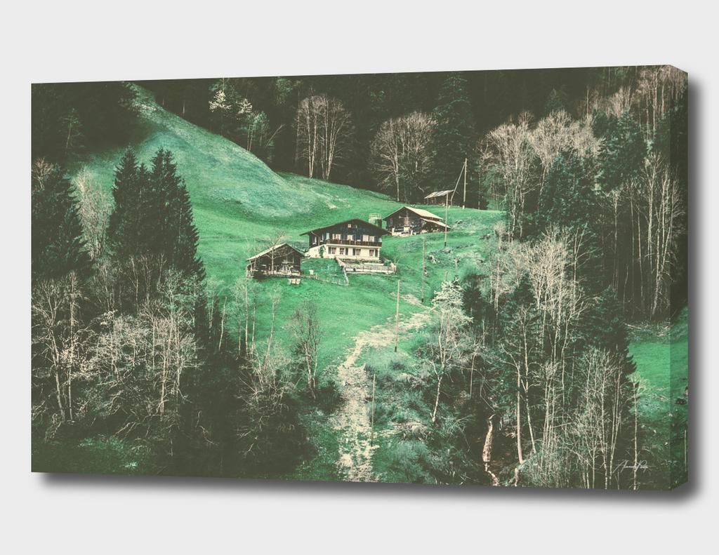 Grindelwald, Switzerland #2