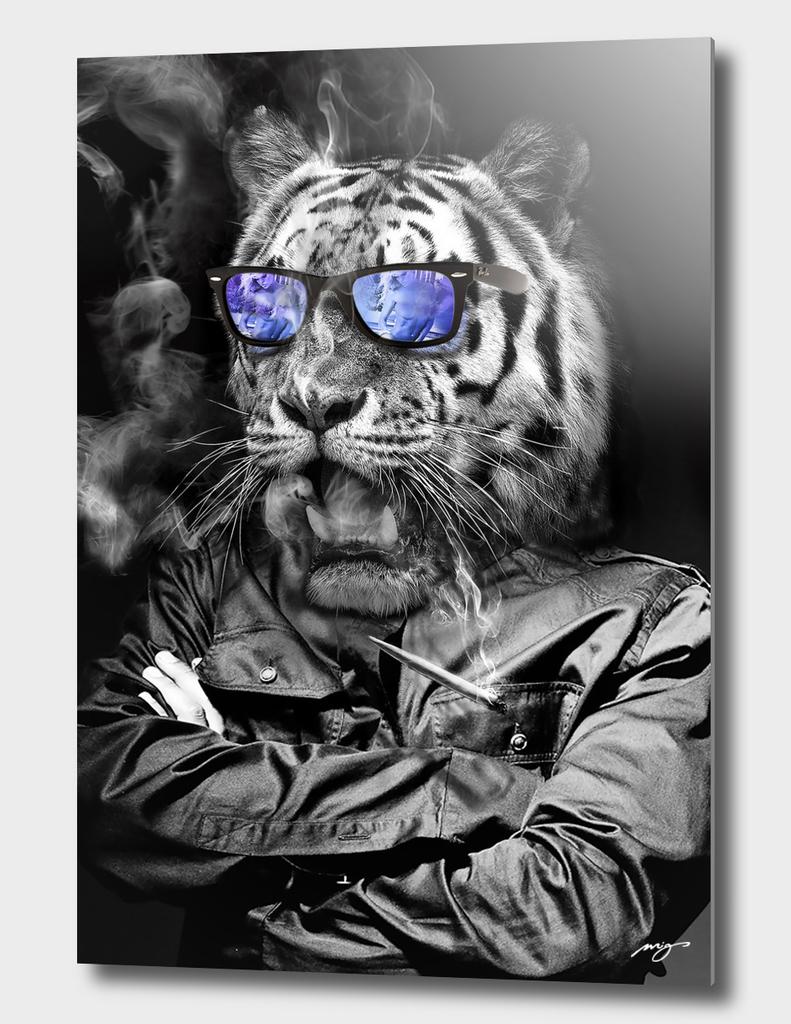 Tiger. Kings series.