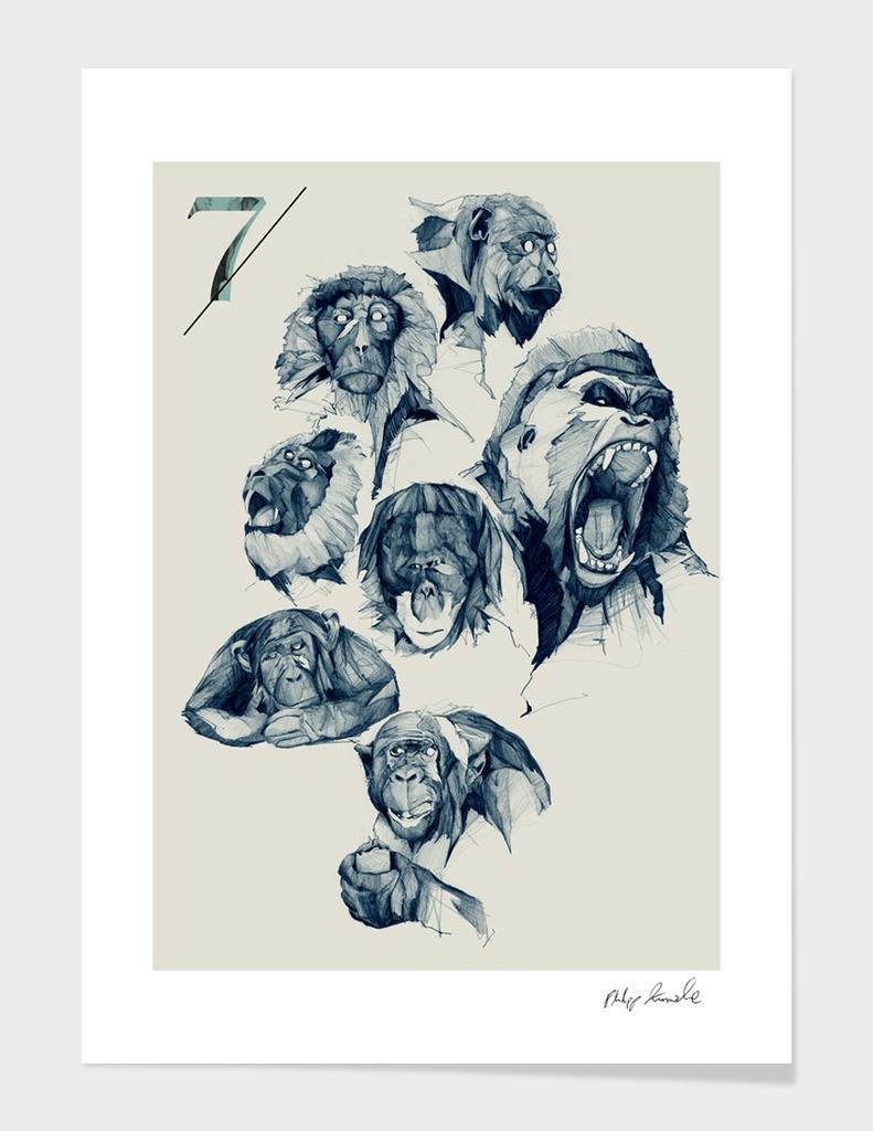 Seven Monkeys