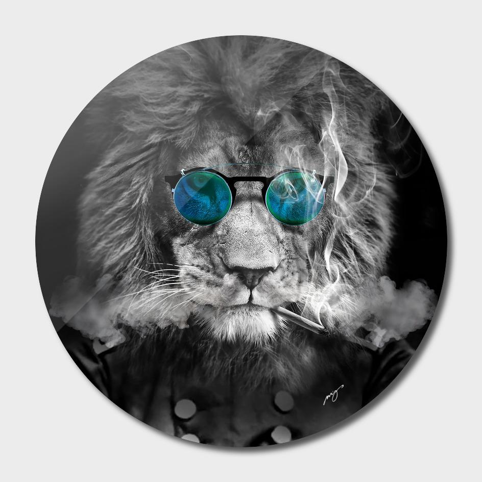 Lion. Kings series.