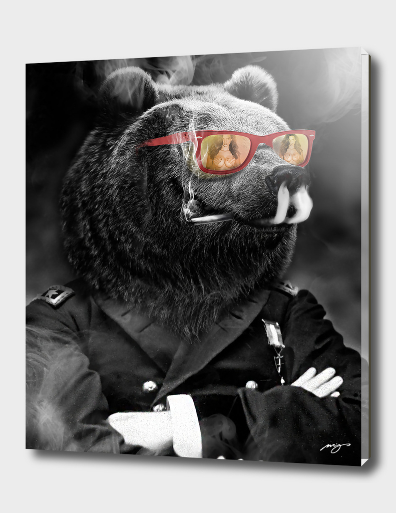 Bear. Kings series.