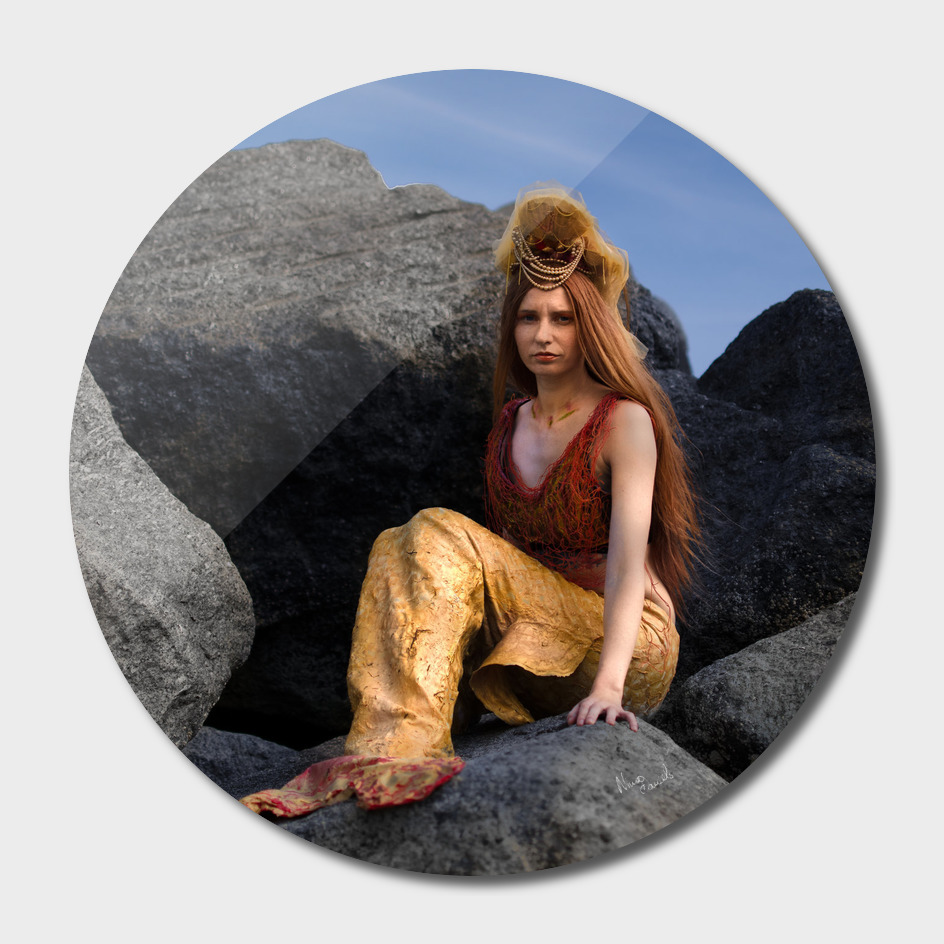 The Mermaid on the rock