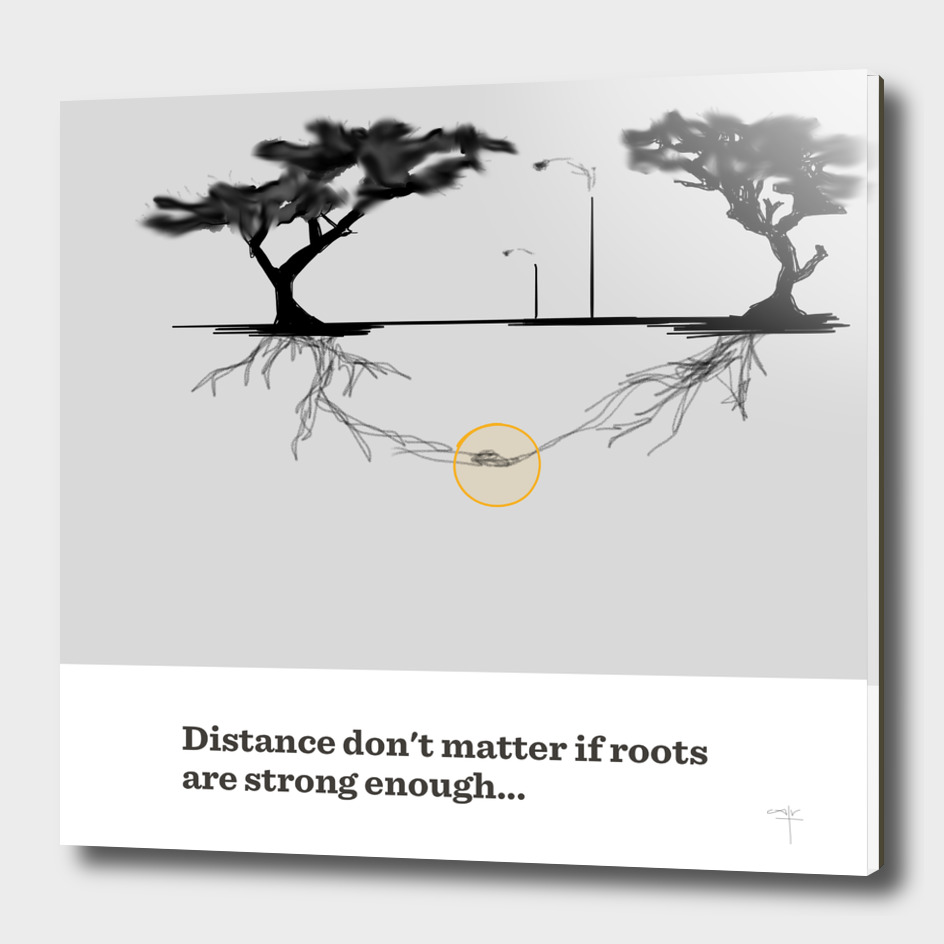 21 - roots and distance