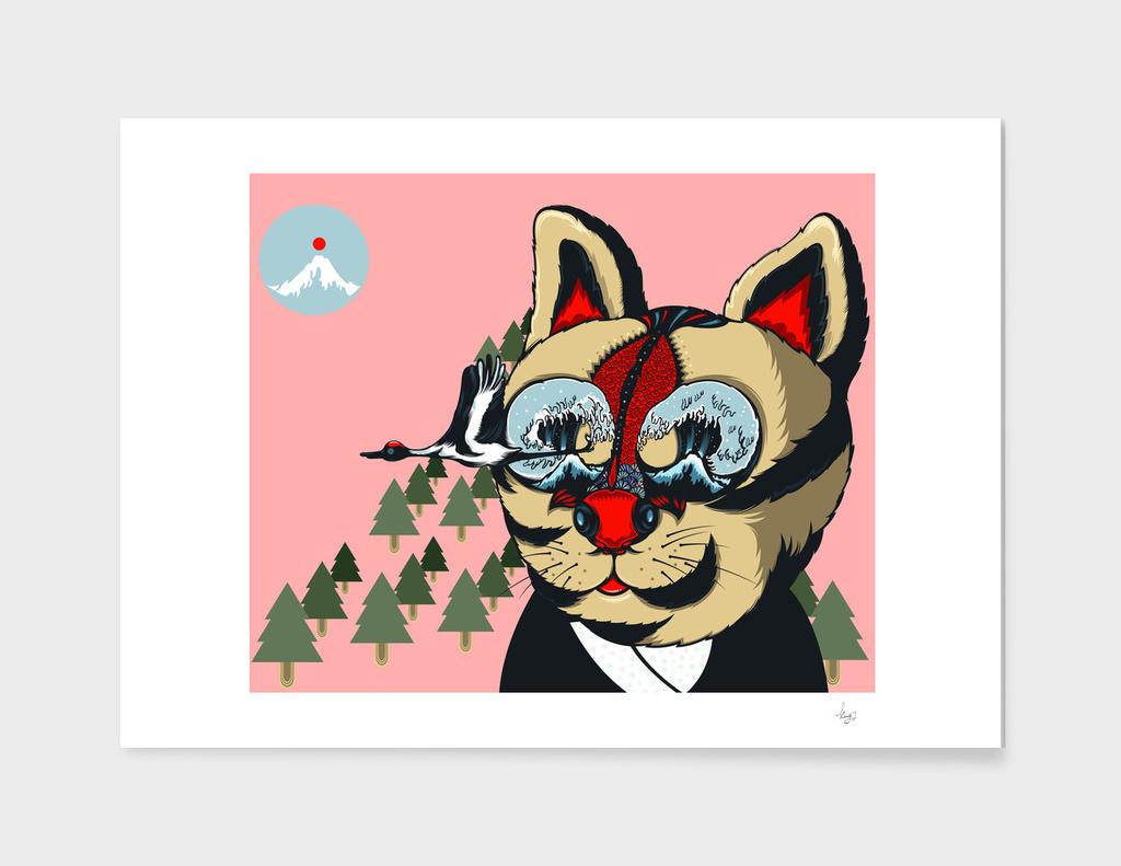 Cat&fish8