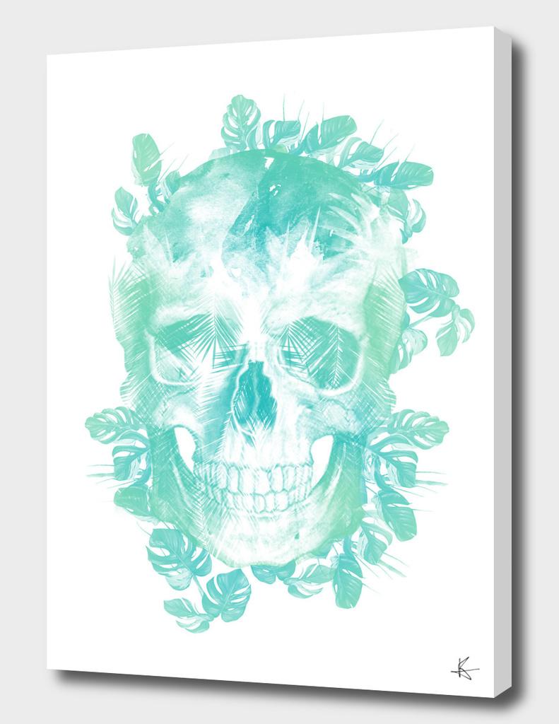 Tropical Skull