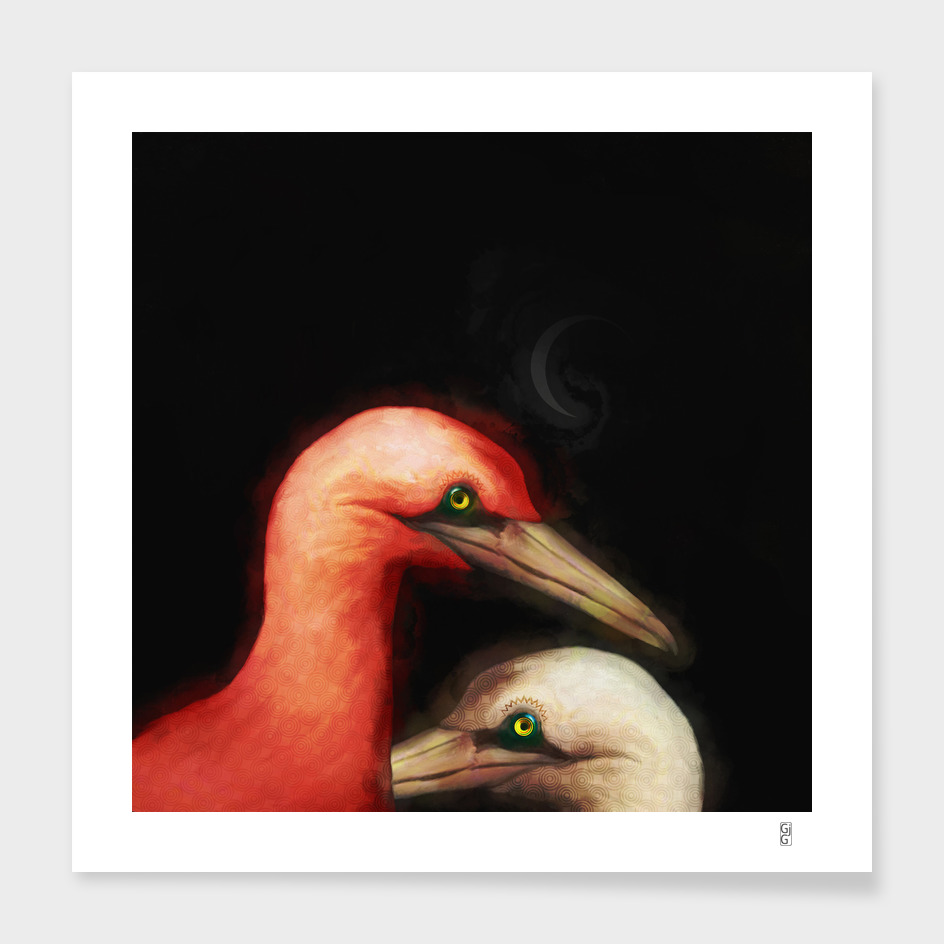 Birds of a different color