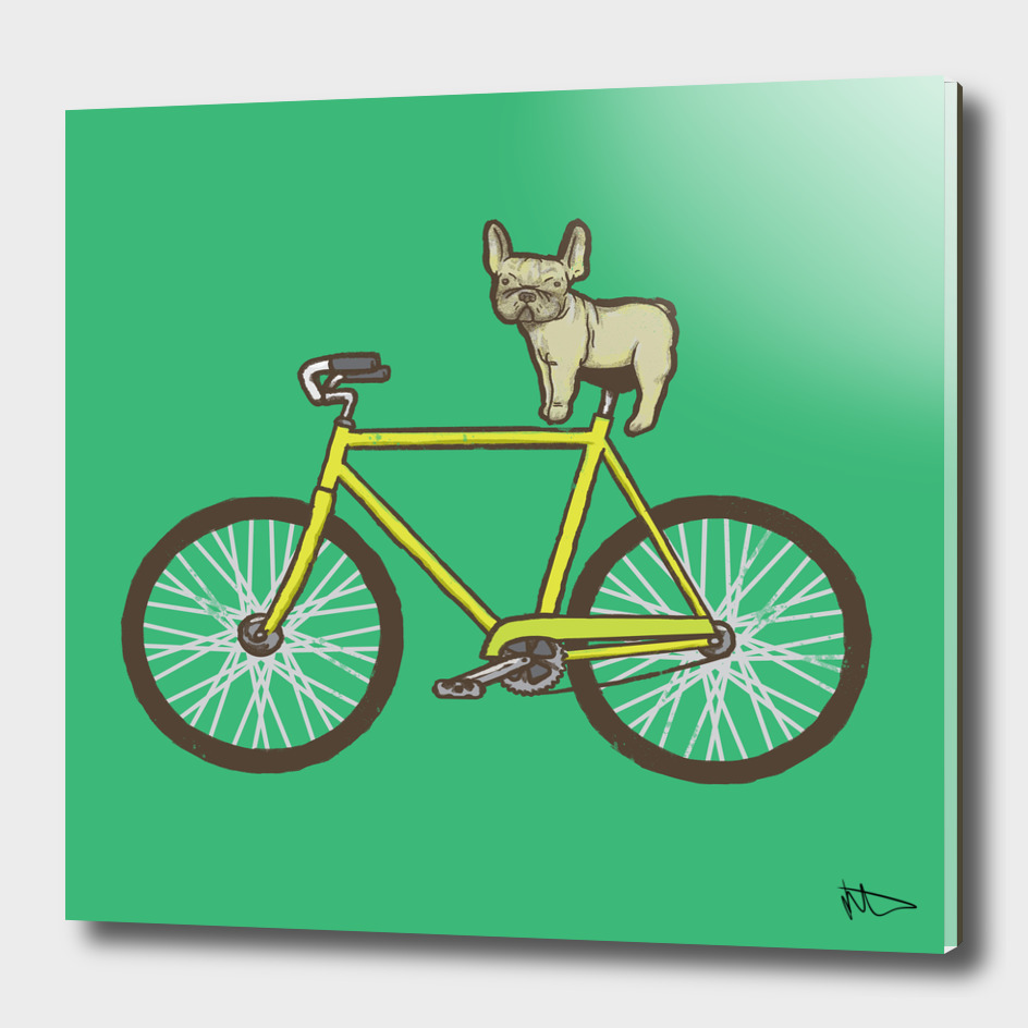 Frenchie on a Fixie
