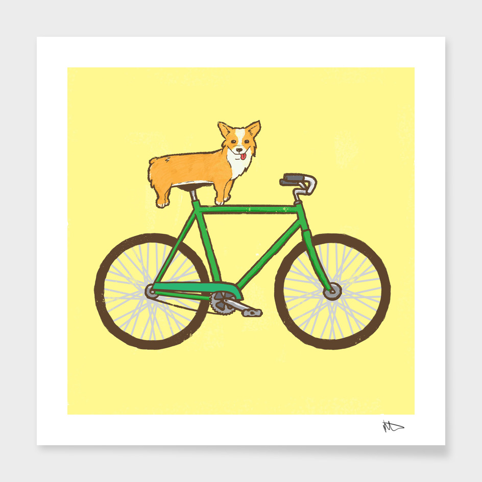 Corgi On A Bike