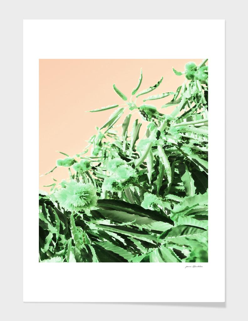 Green chestnut tree impressions