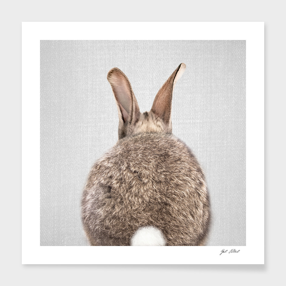 Rabbit Tail - Colorful