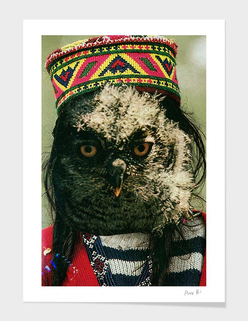 Kubrick owl