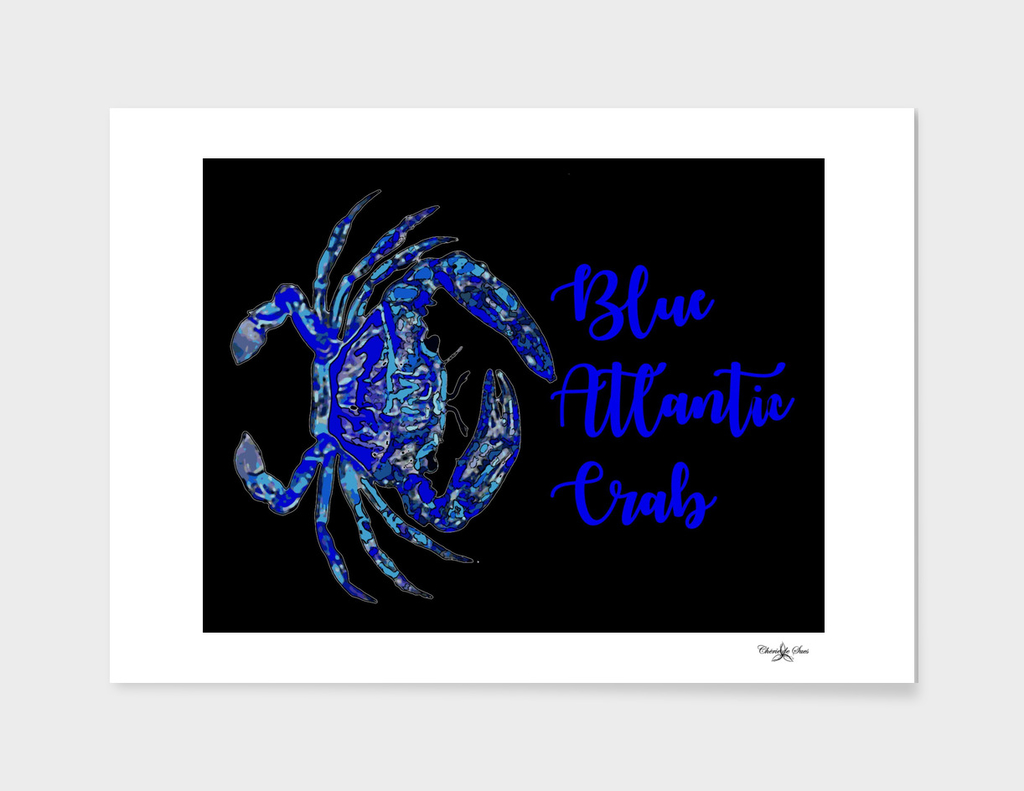 Blue Atlantic Crab