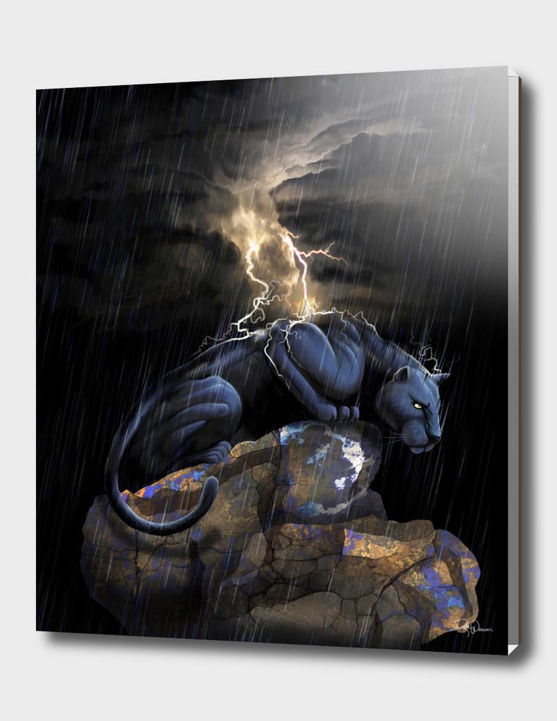 Panther Rain