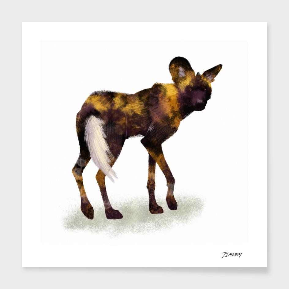 Painted Dog