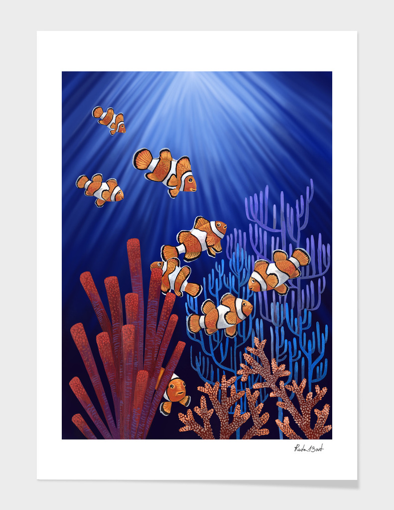 Clown Fish tank