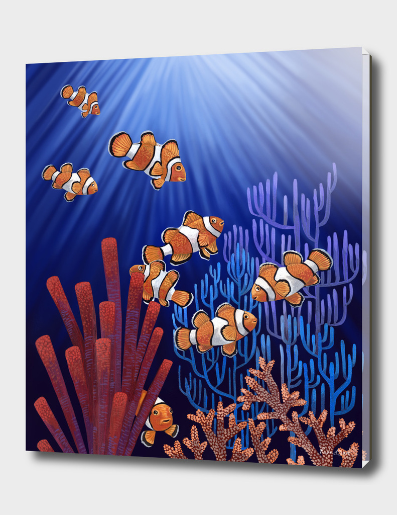Clown Fish tank