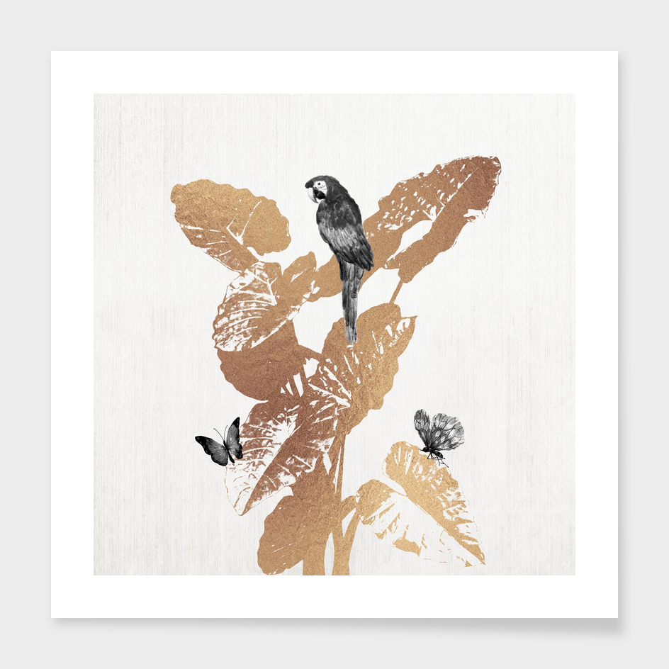Fluttering Nature II-Square Edition