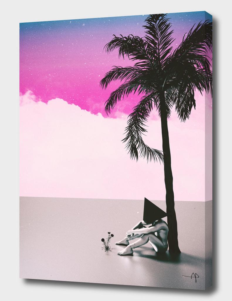 PALM TREE 18