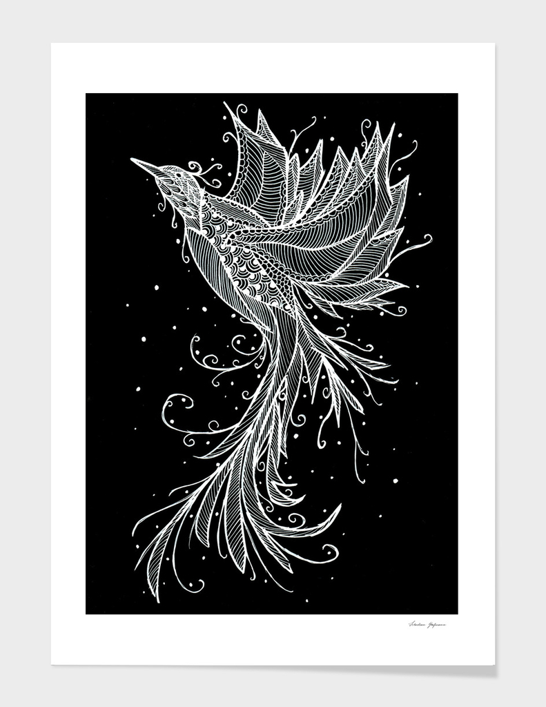 Rising Phoenix White on Black