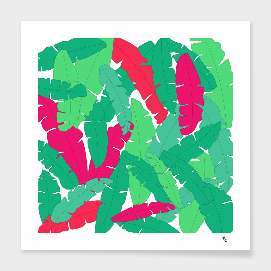foliage colours
