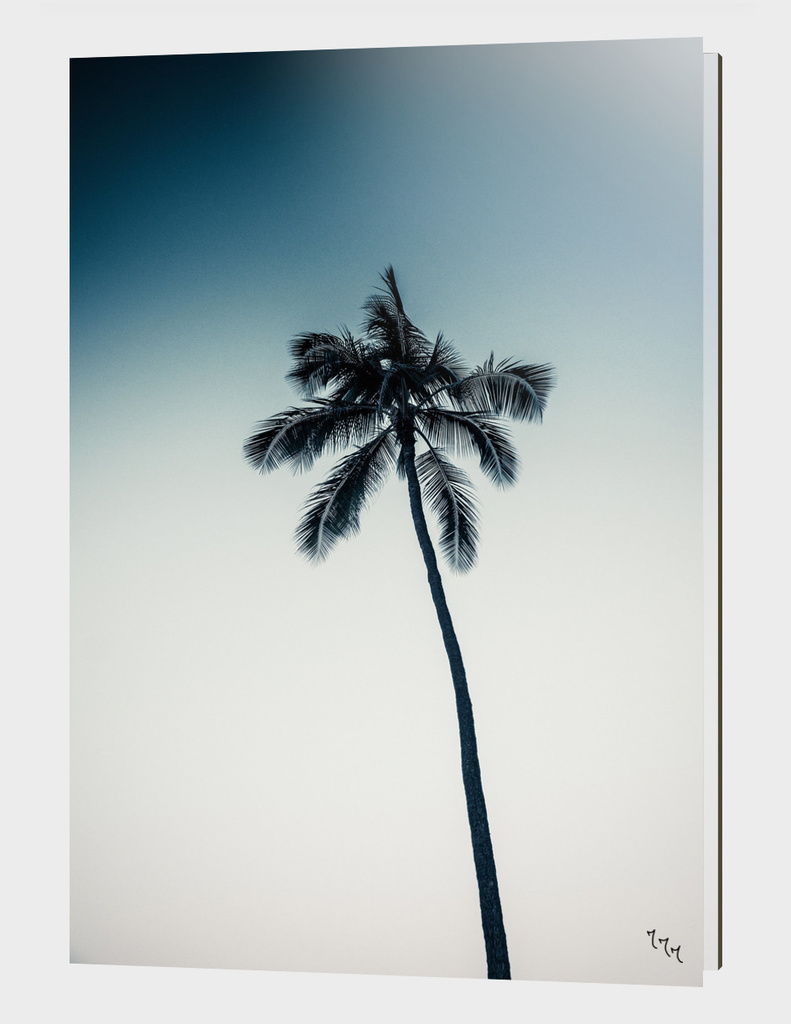 palm tree ver.darkgreen