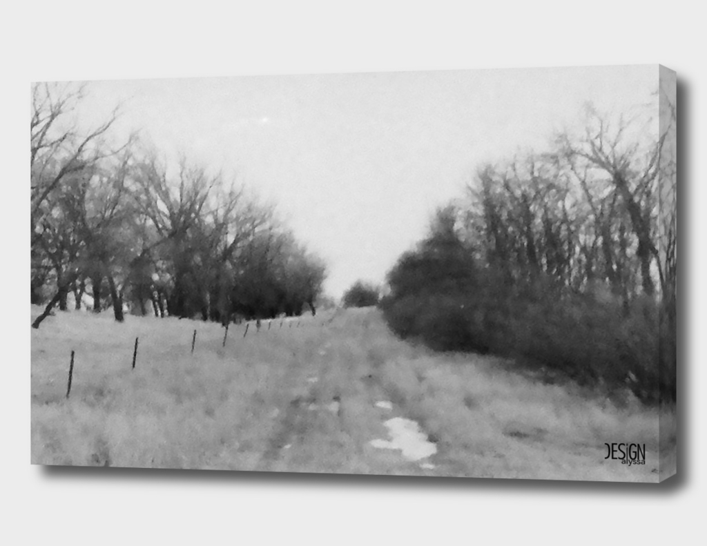 Road to Nowhere - Film Photograph