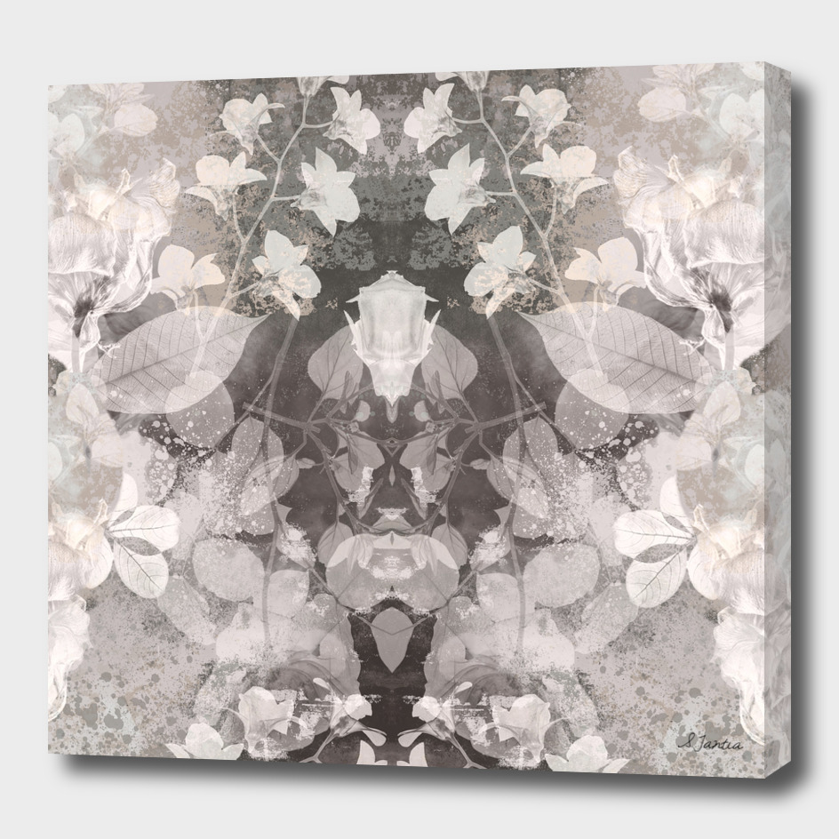 Floral Radiogrpah